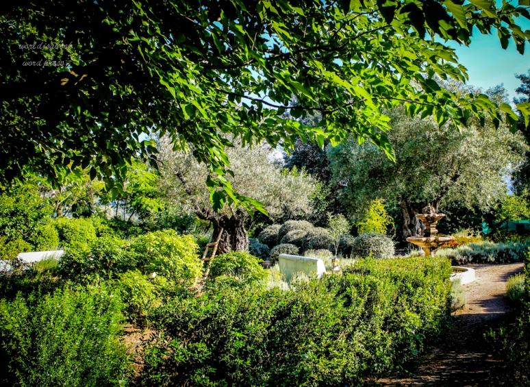 Ronda walk- garden-1