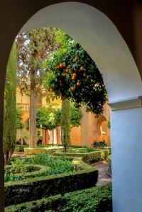 gardens-pt3 01