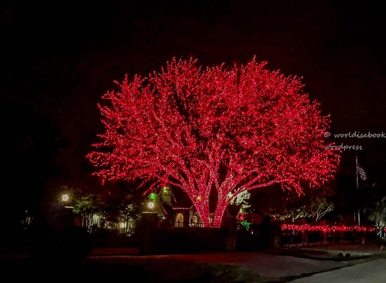 img_032-red-xmas-tree1-almost