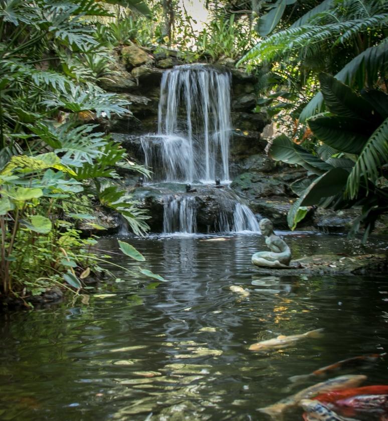 _MG_2108-2-Sarasota Garden