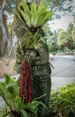 _MG_2109-2-Sarasota Garden