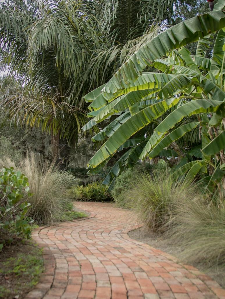 _MG_2209-Sarasota Garden