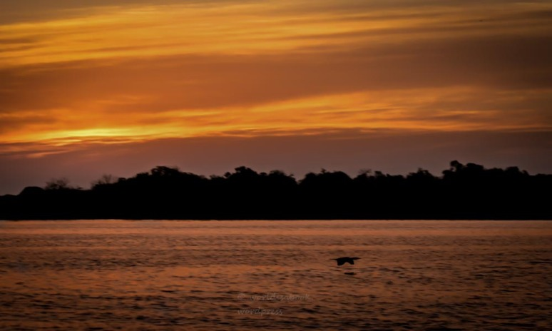 sunset 3-10