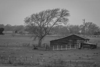 countryside http://wp.me/pSlDL-dxR