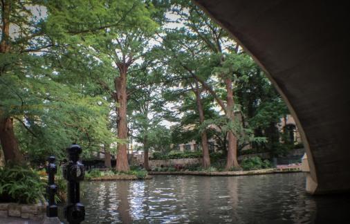 Riverwalk http://wp.me/pSlDL-dBU