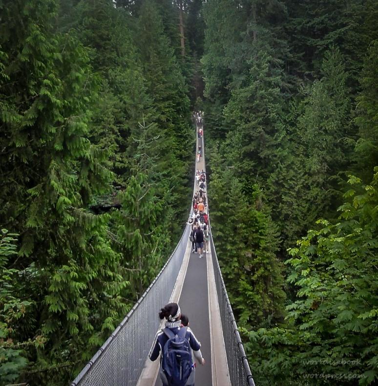 Susp Bridge Narrow