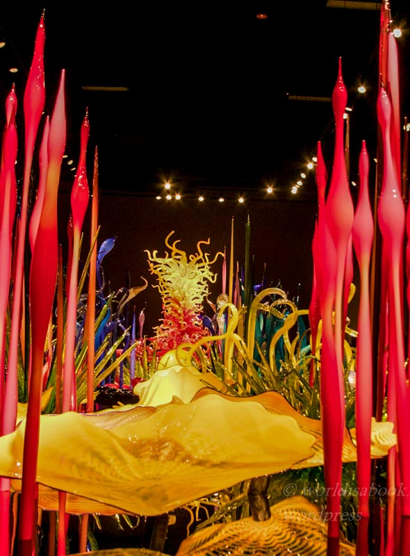 0w5a0078-chihuly