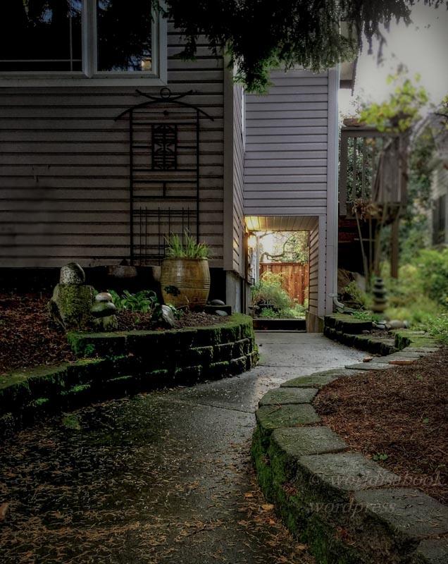 fullsizerender-36-edit-into-a-garden